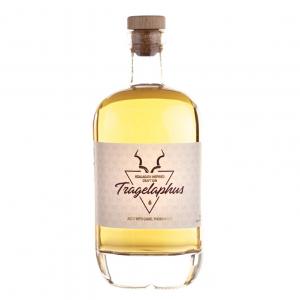 Tragelaphus Gin
